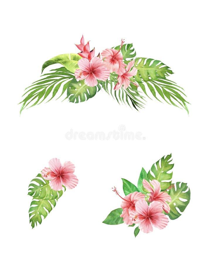 手画水彩套热带花束木槿花、棕榈树和在白色背景隔绝的monstera叶子 向量例证