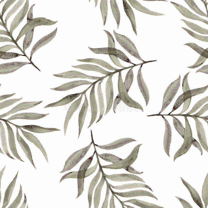 手画的水彩 与叶子的无缝的样式在白色背景 墙纸的,纺织品,织品美好的设计 皇族释放例证