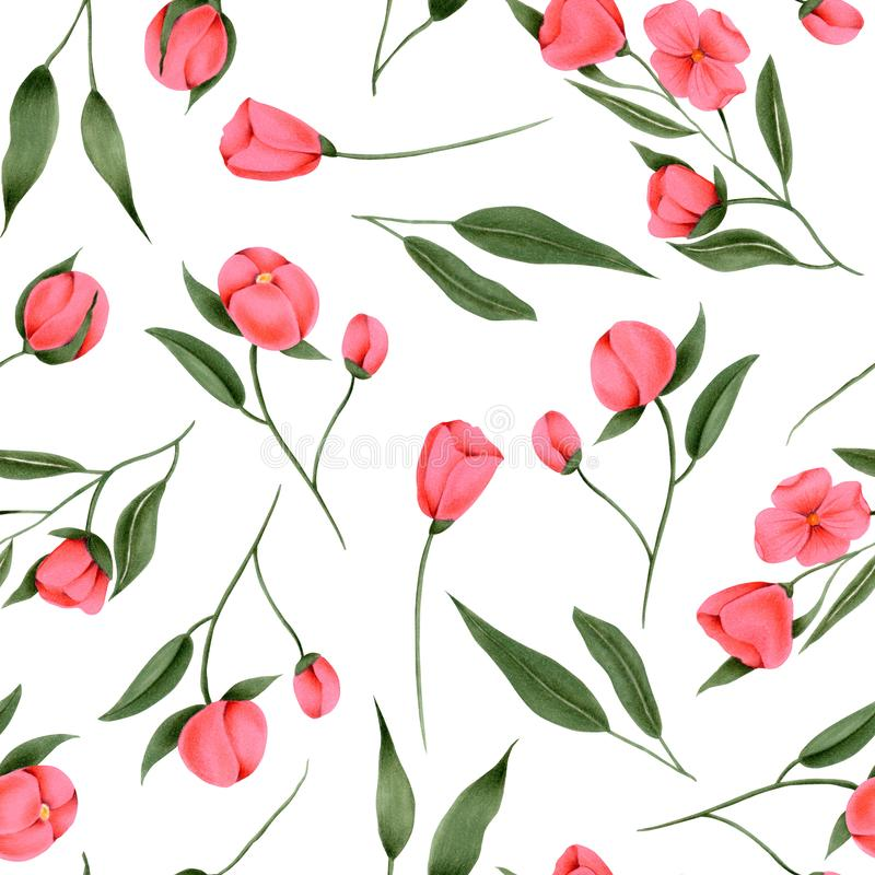 手画绯红色花的无缝的样式 向量例证