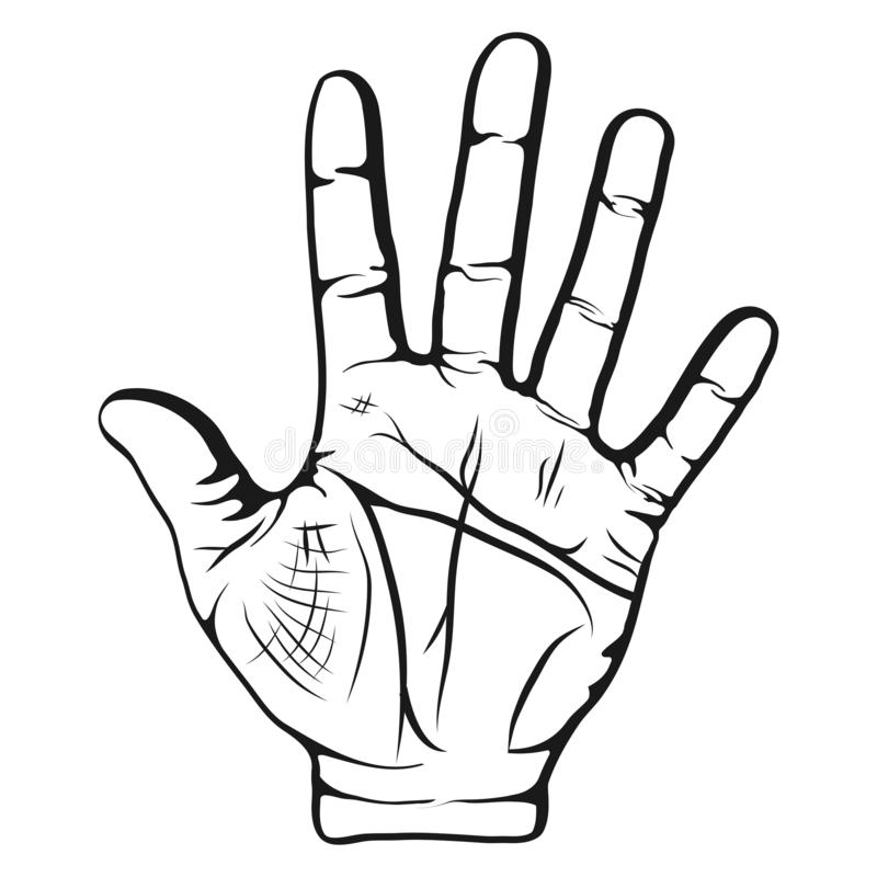 手的被打开的棕榈在白色背景被举隔绝,五个手指打手势 由线的占卜在棕榈 皇族释放例证