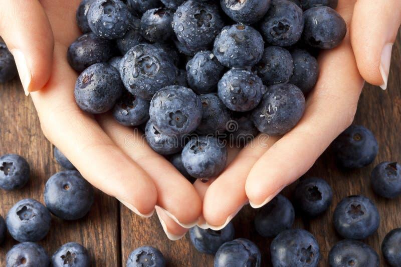 手蓝莓健康食物 库存照片