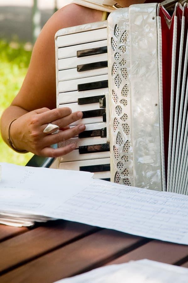 手风琴 库存照片