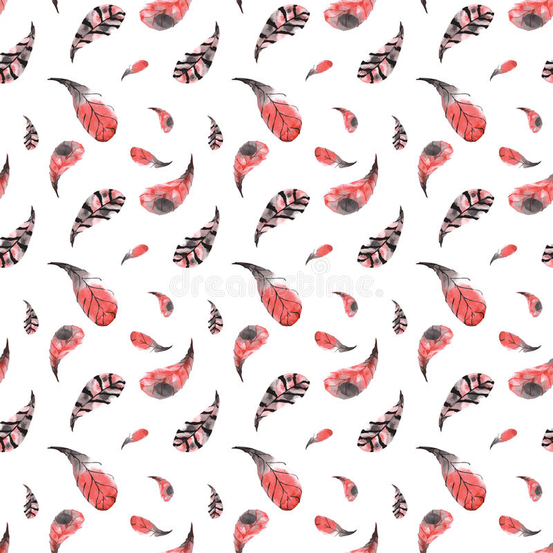 手画水彩红色和桃红色羽毛的无缝的样式 向量例证