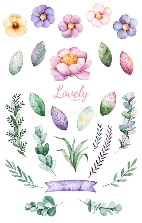 手画水彩花、叶子和逗人喜爱的独角兽 向量例证