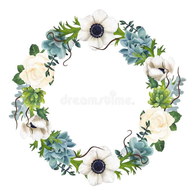 手画水彩银莲花属和多汁植物花圈 库存图片