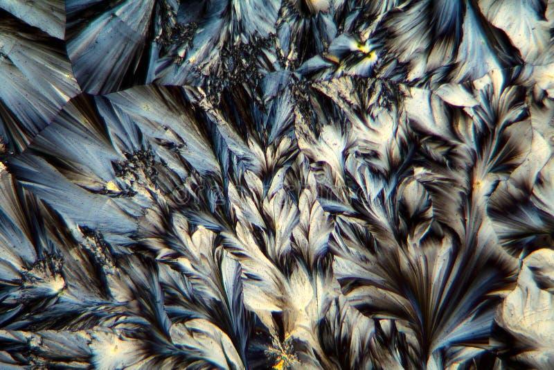 扑热息痛水晶在显微镜下 库存图片