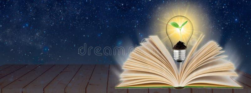 打开书和发光的电灯泡在它 知识,教育概念 全景wiev 库存例证