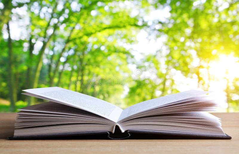 打开在木板条的书 免版税库存照片