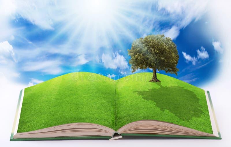 打开在自然的书 免版税库存图片