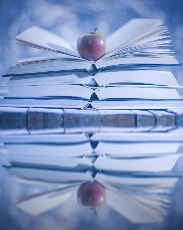 打开在水反映的书 横向雪多雪的故事结构树冬天 库存图片