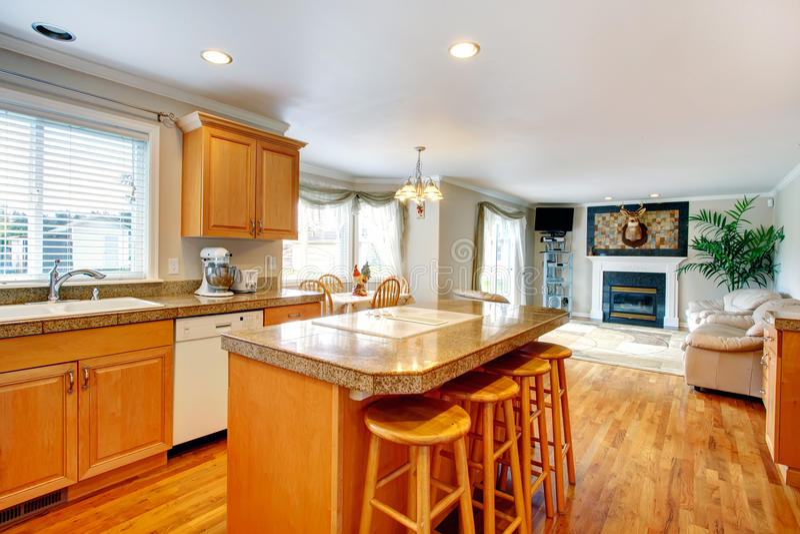 打开居住的设计想法和厨房室与饭厅 库存照片