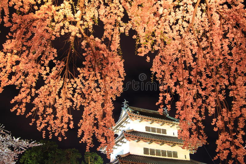 打开弘前城堡和樱花 免版税库存照片