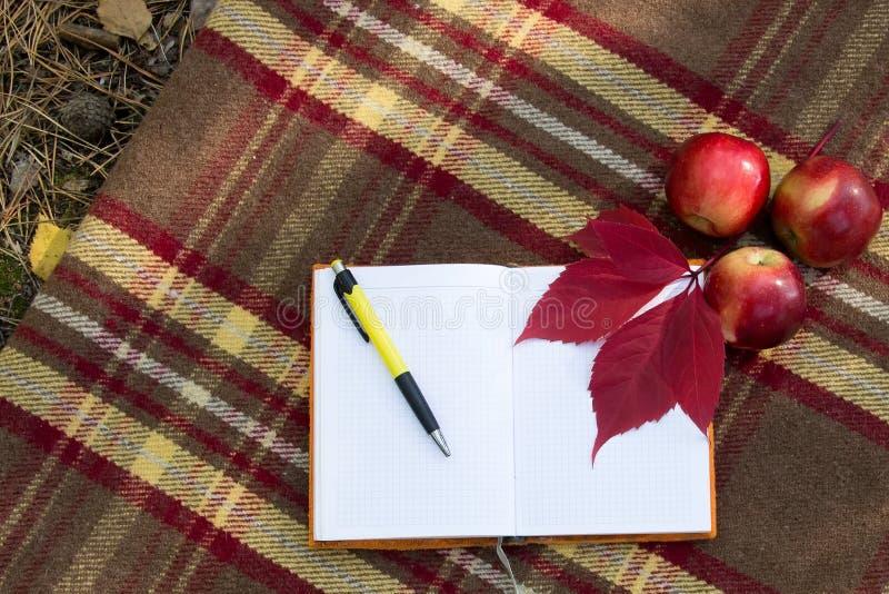 打开笔记本和笔在地毯用苹果和红色叶子 库存图片