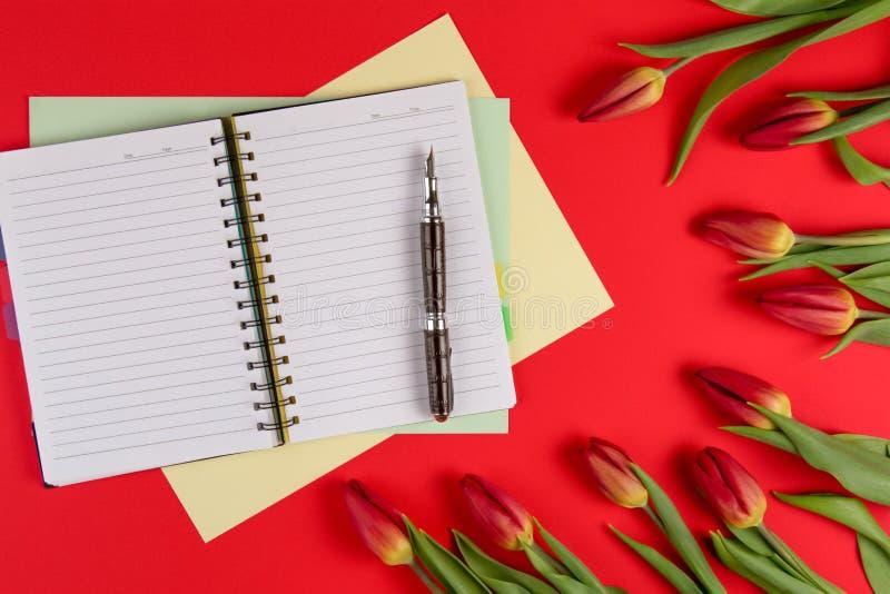 打开纸笔记本,纸牌和笔在红色背景与美好的新花郁金香 图库摄影