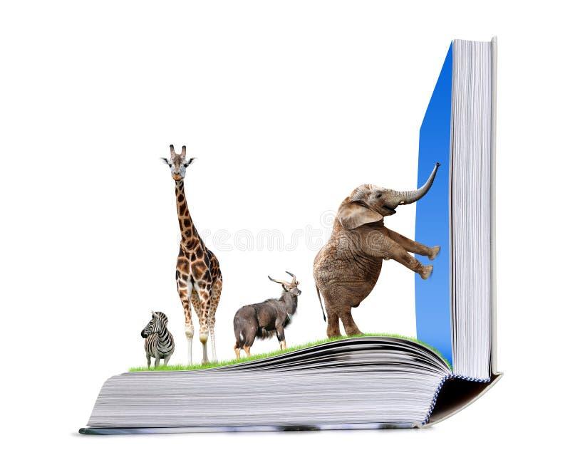 打开自然书与动物的 免版税库存照片