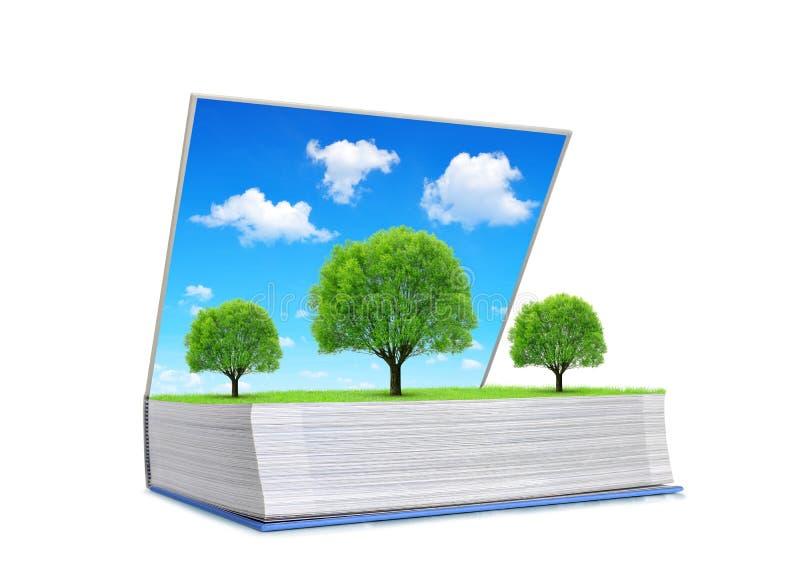打开自然书与树的在白色背景和蓝天隔绝的草甸 库存照片