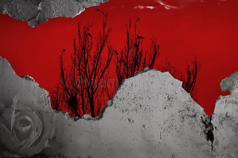 打破的墙壁、红色天空摄影和艺术 库存图片