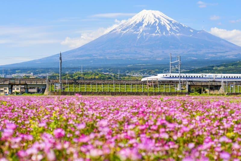 打雷对山富士的Shinkansen 免版税库存图片