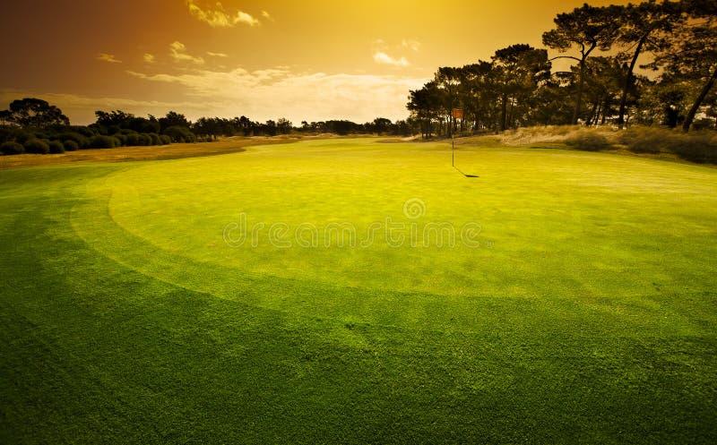 打高尔夫球的绿色 库存照片