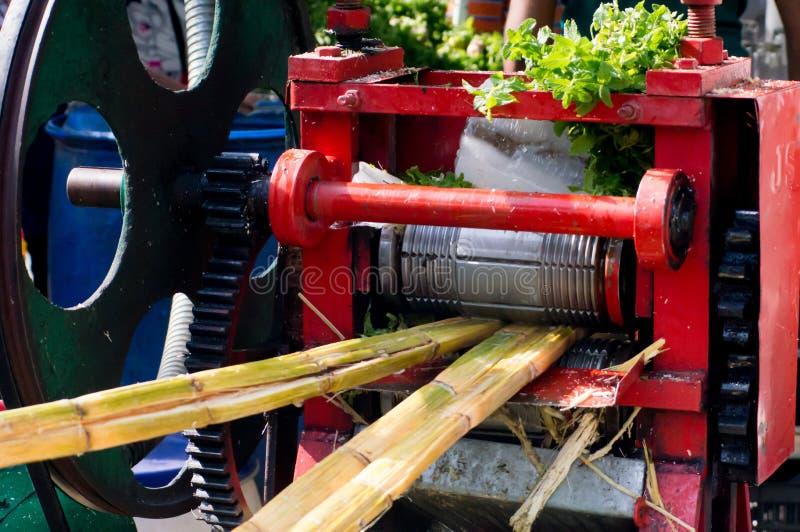 打鼓新闻使用对汁液甘蔗在印度 免版税图库摄影