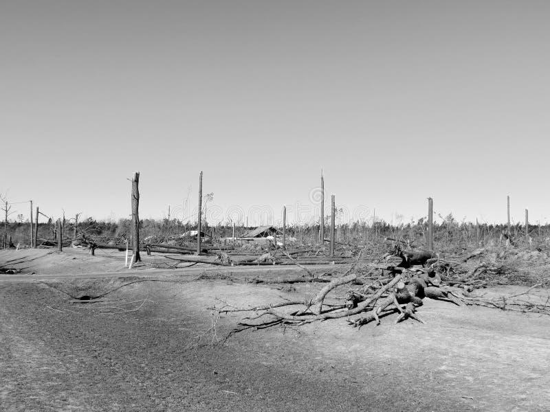 打破的黑&白色风暴 图库摄影