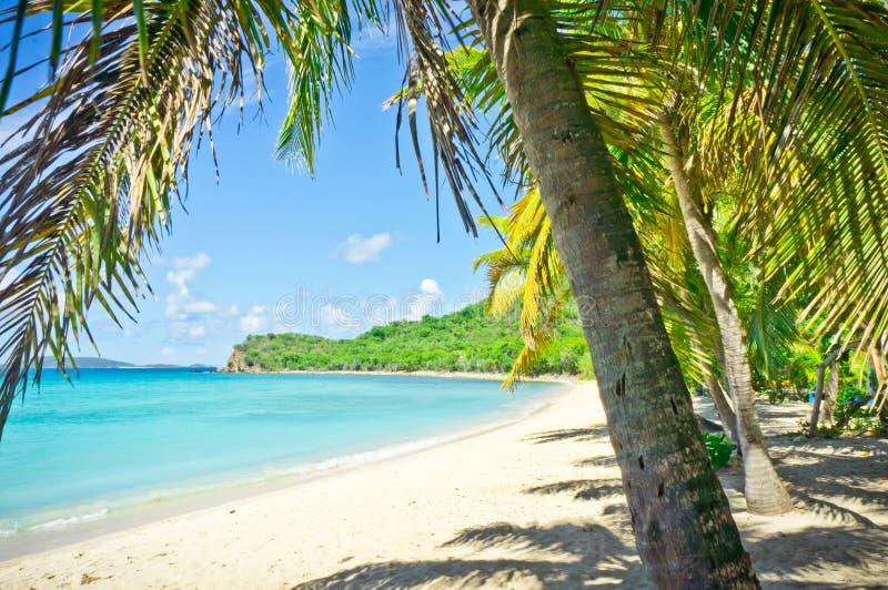 托尔托拉岛,英属维尔京群岛 库存图片
