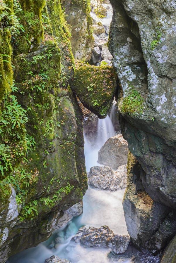 托尔明,斯洛文尼亚美丽的峡谷  免版税库存图片