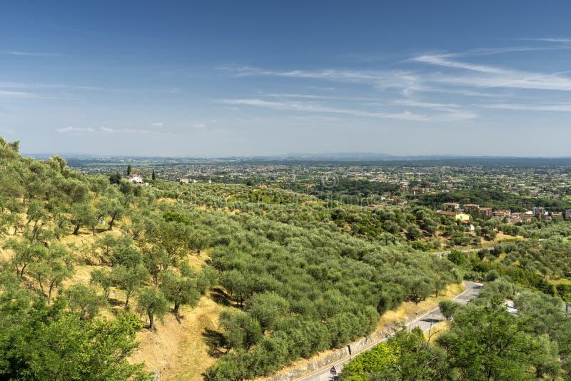 托斯卡纳佩西亚附近的乡村景观 免版税库存照片