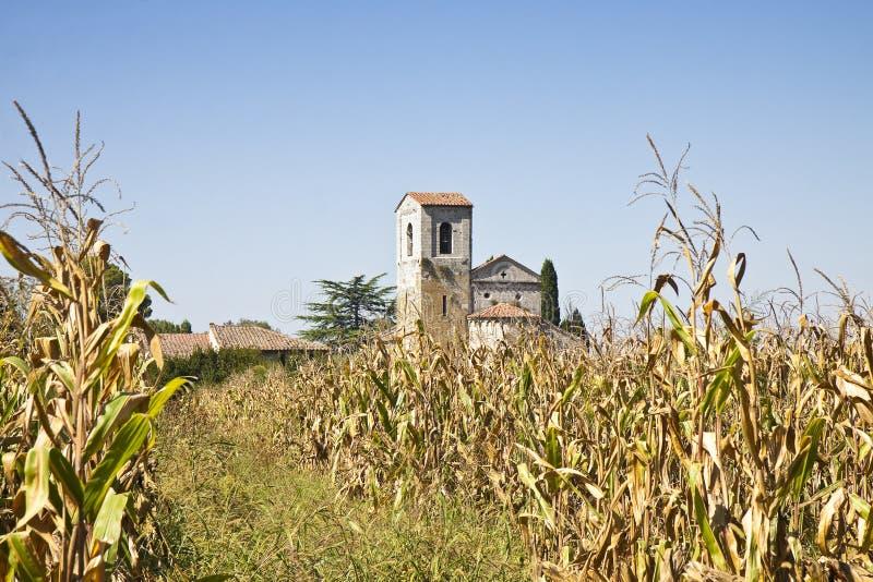 托斯卡纳在麦地浸没的罗马式教会 免版税库存图片