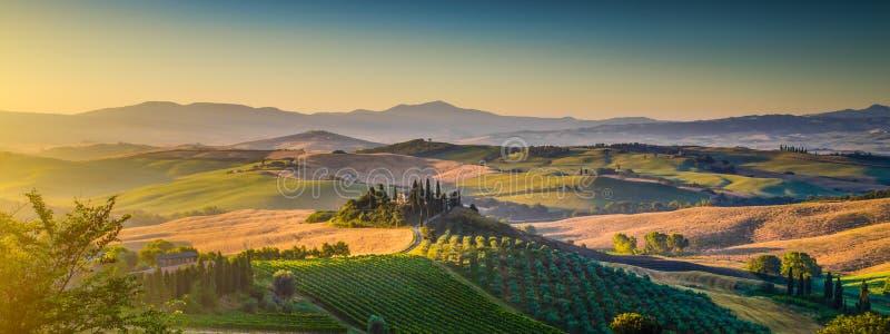 托斯卡纳日出的, Val d'Orcia,意大利风景全景 免版税库存照片