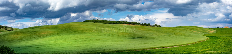 托斯卡纳春天,春天起伏的山丘 乡村景观 绿地和农田 意大利、欧洲 免版税库存照片