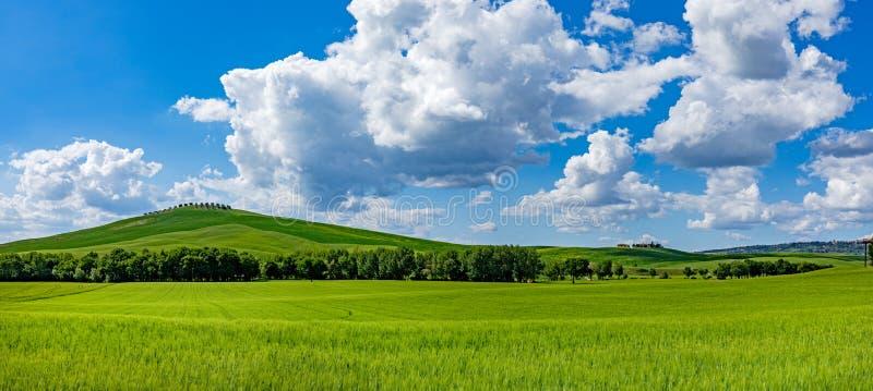 托斯卡纳春天,春天起伏的山丘 乡村景观 绿地和农田 意大利、欧洲 免版税库存图片