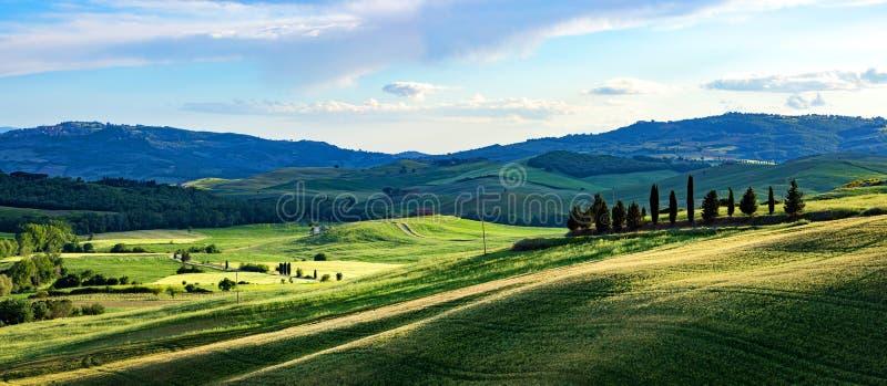 托斯卡纳春天,春天起伏的山丘 乡村景观 绿地和农田 意大利、欧洲 免版税图库摄影