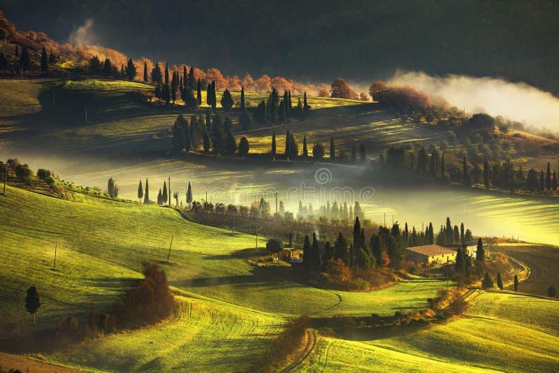 托斯卡纳有雾的早晨、农田和柏树 意大利 库存照片
