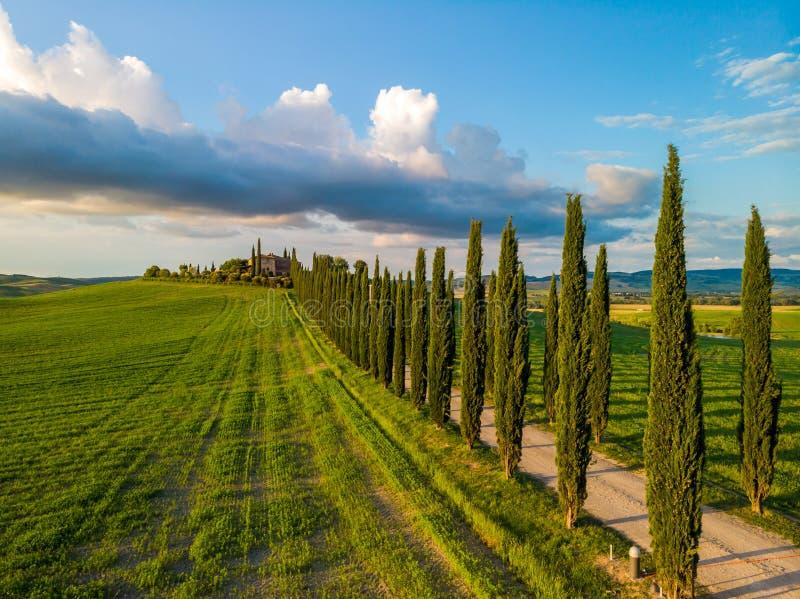托斯卡纳的美好的风景风景在意大利-沿白色路的柏树-鸟瞰图-接近皮恩扎,托斯卡纳,意大利 免版税库存照片