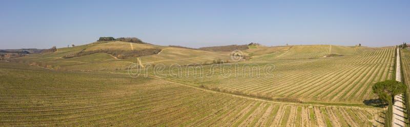 托斯卡纳的葡萄园的风景在意大利在春天 酒路线 免版税库存图片