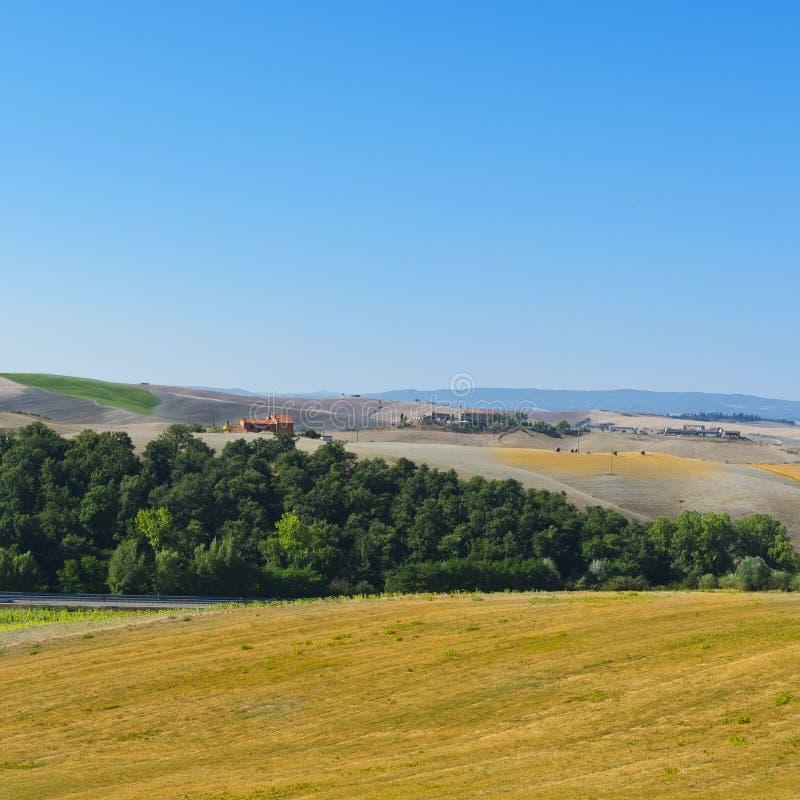 托斯卡纳的被犁的小山 库存图片