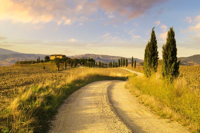 托斯卡纳风景,秋天领域,意大利, Val, D, Orcia 库存照片