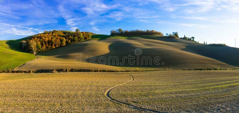 托斯卡纳,克利特的美丽如画的农村风景senesi,意大利 图库摄影