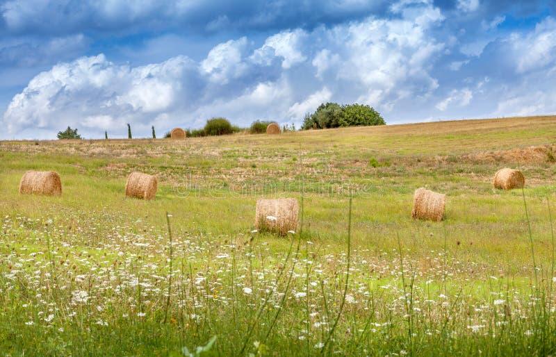 托斯卡纳,意大利的农村风景 大包和干草堆领域的 免版税库存照片