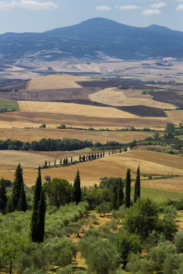托斯卡纳,意大利的绵延山 库存图片