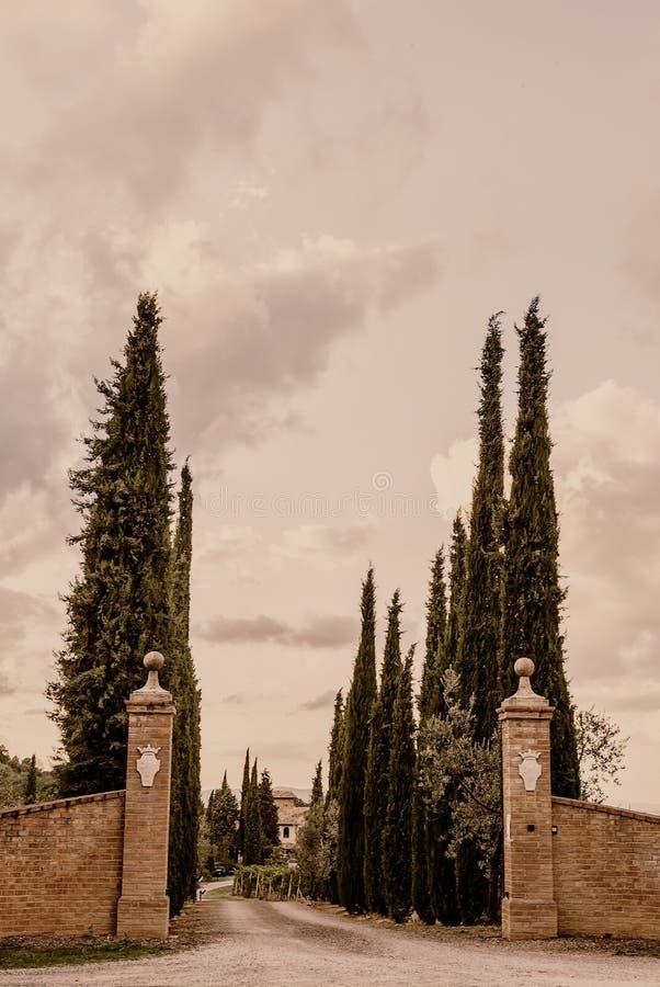 托斯卡纳-在蒙达奇诺小山顶镇的倾斜的一个庄园  图库摄影