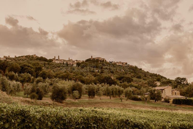 托斯卡纳- Mantalcino小山顶镇如被看见从下面农场 免版税库存图片