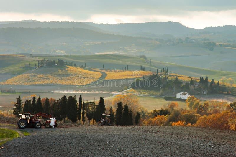 托斯坎农田全景,托斯卡纳,意大利 库存照片