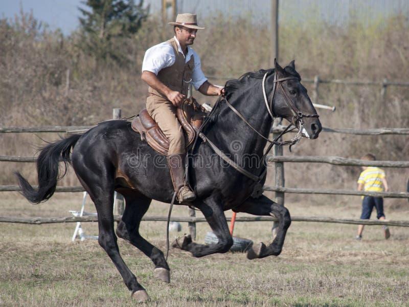 托斯坎Maremma的骑士 免版税库存照片