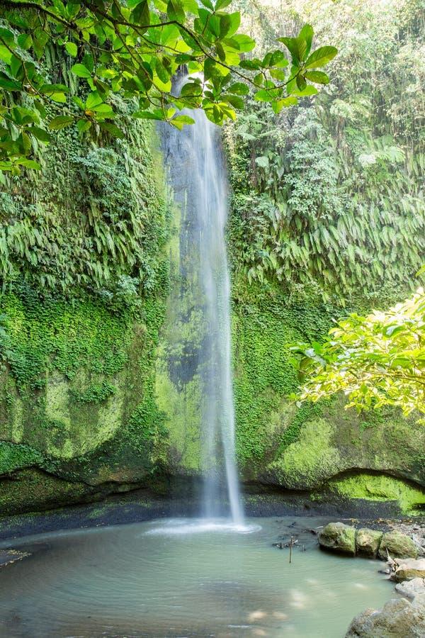 托莫洪Selatan瀑布在苏拉威西岛,万鸦老,印度尼西亚 免版税图库摄影