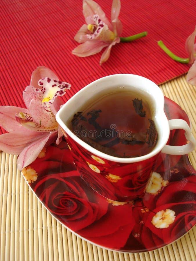 托起表单在桃红色红色秸杆茶的重点兰花 免版税库存图片