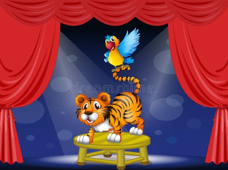执行在阶段的老虎和一只五颜六色的鹦鹉 向量例证