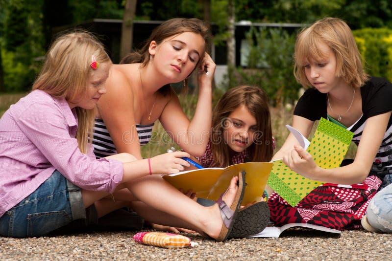 执行家庭作业我们的公园 免版税库存图片
