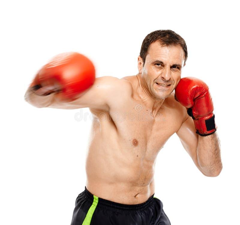执行拳打的Kickbox战斗机 图库摄影